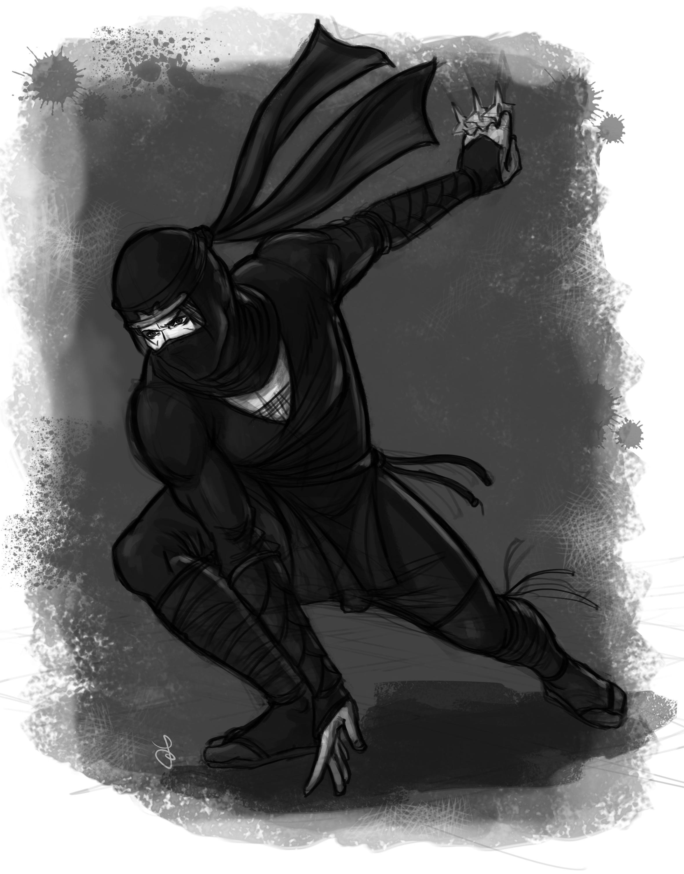 http://www.francescaangelinelli.it/wp-content/uploads/2017/02/ninja1.jpg